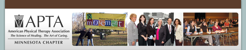 Minnesota Chapter American Physical Therapy Association